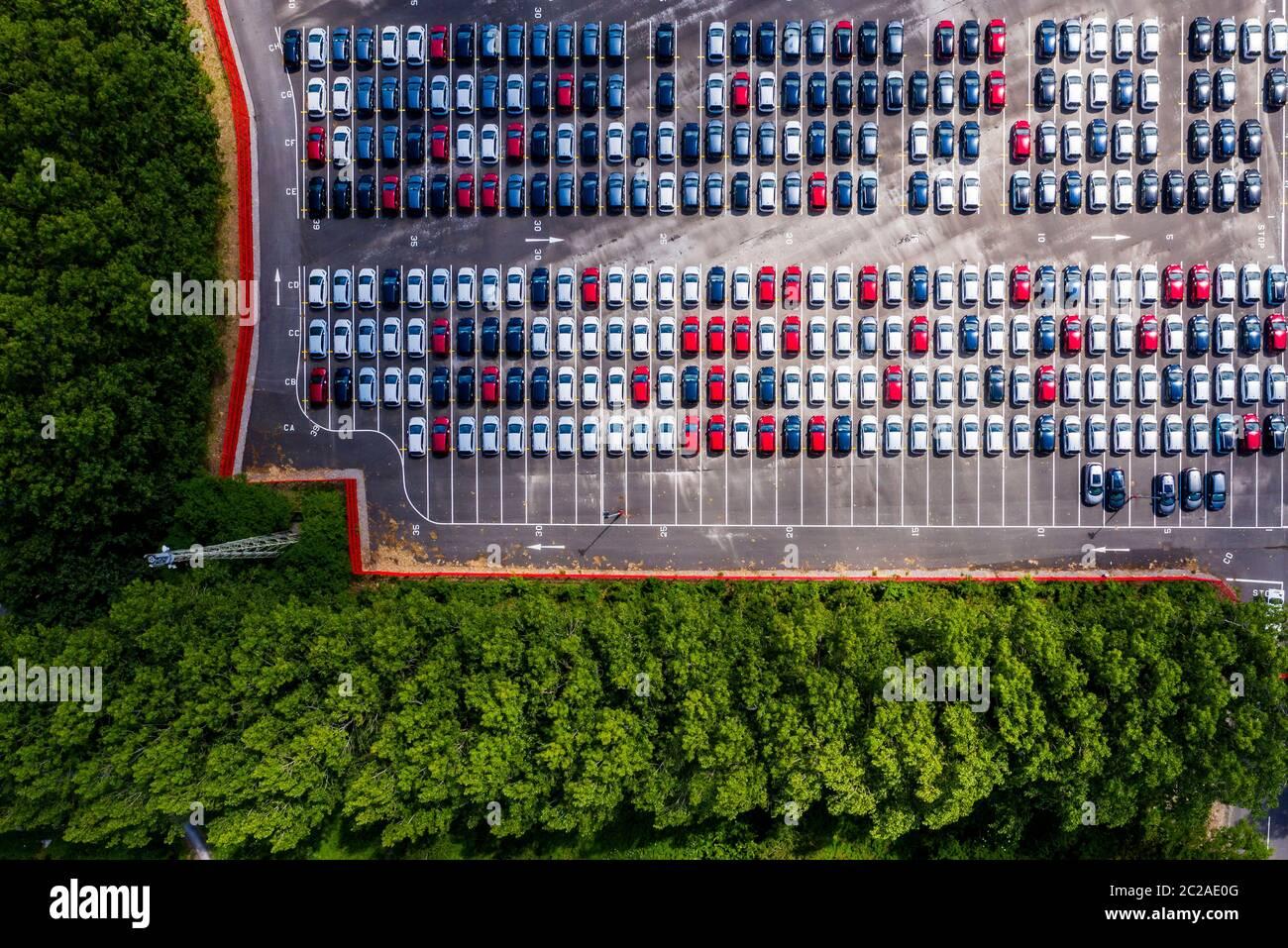 Ein Überblick über neue Autos, die am Royal Portbury Dock in Avonmouth, Bristol geparkt wurden. Stockfoto