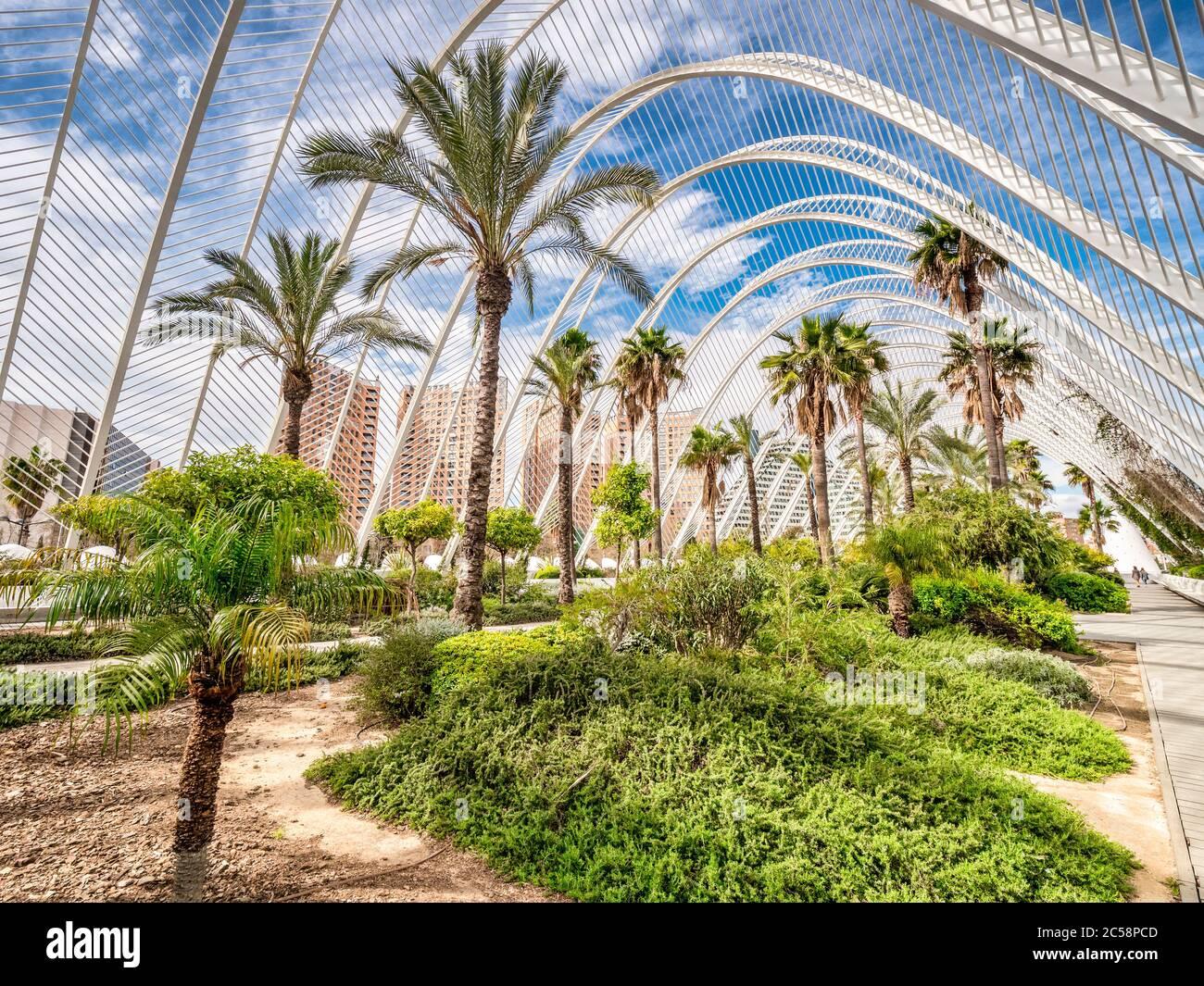 3. März 2020: Valencia, Spanien - L'Umbracle, ein Skulpturengarten und Spaziergang, der einen Eingang zur Stadt der Künste und Wissenschaften in Valencia bildet. Stockfoto