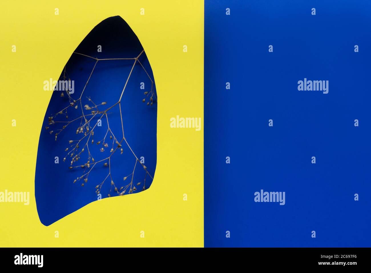 Lungen Symbol Papierkunst mit trockenen Zweigen, blau und gelb. Welttag der Tuberkulose. Gesundheitswesen, Medizin, Lungenkrebs, interne Spenderorgan und STOP s Stockfoto
