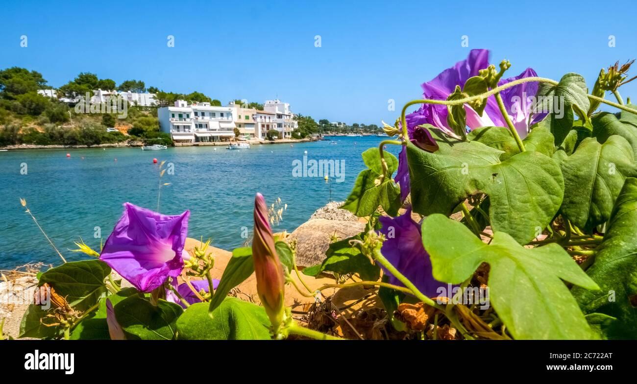 Leere Promenade in Porto Petro, Ferienort im Süden von Mallorca , Europa, Balearen, Spanien, es, Reisen, Tourismus, Ziel, Sehenswürdigkeiten Stockfoto