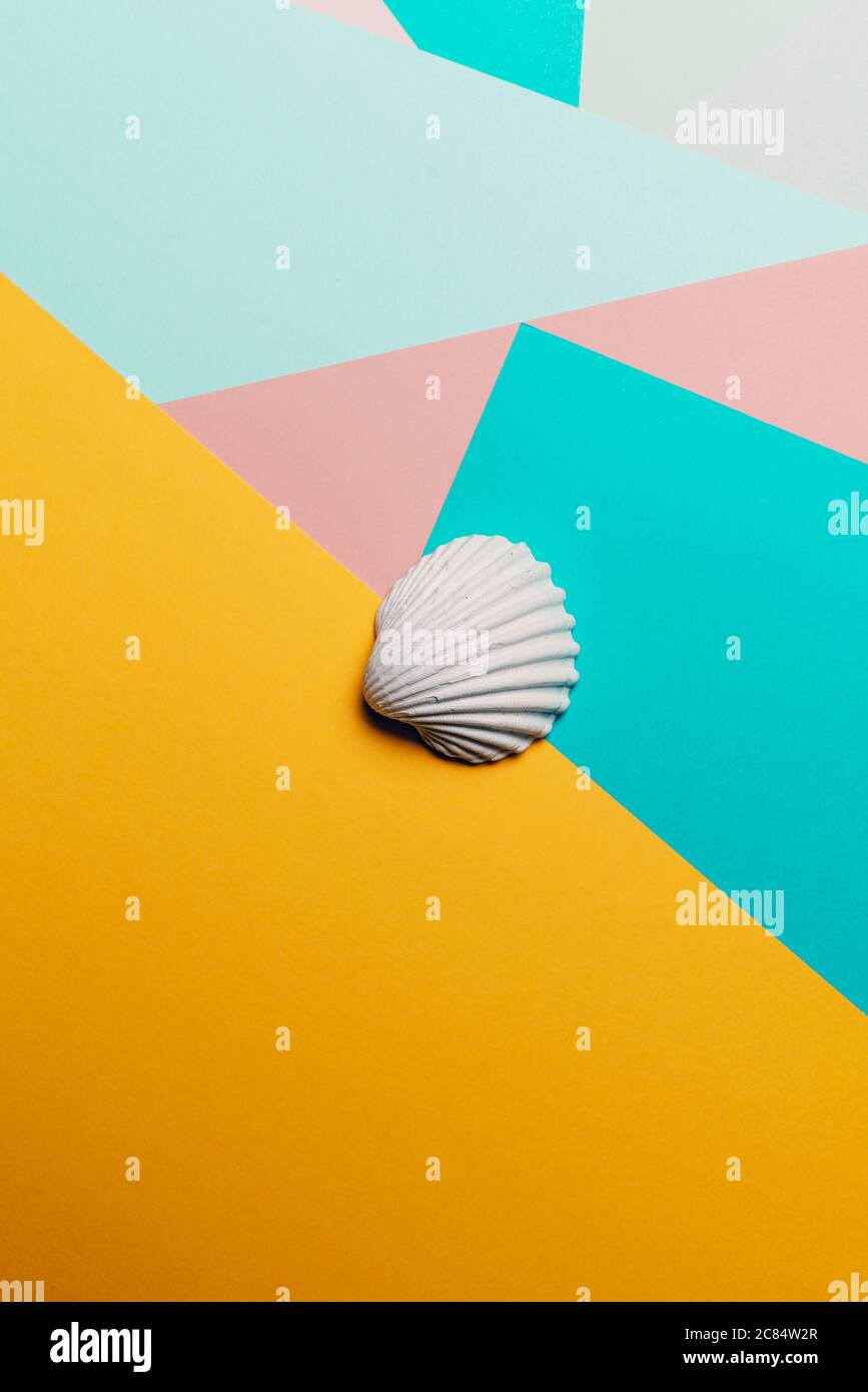 Weiße Muschel auf einem geometrischen bunten abstrakten Hintergrund, Summer Time Concept Stockfoto