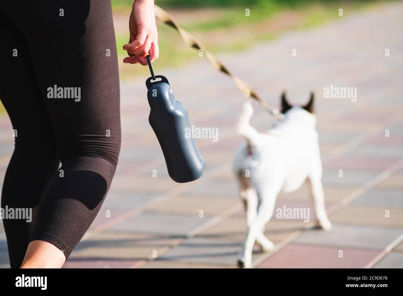 Aktiver Lebensstil mit Haustieren in der Stadt, Accessoires, Laufen mit Hunden. Trinkflasche in Frauenhand, Hund im Hintergrund Stockfoto