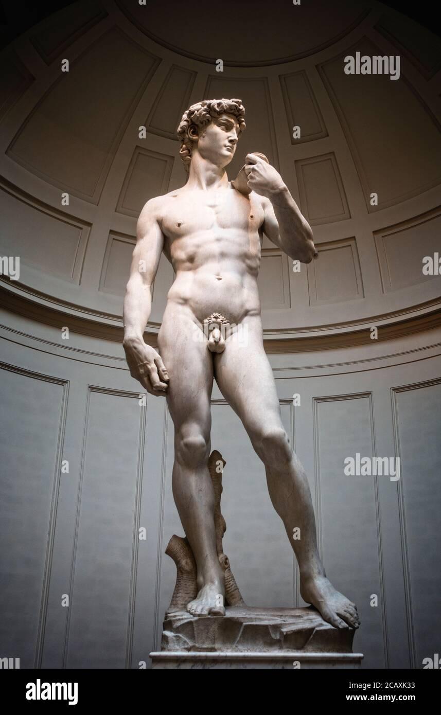 Michelangelos David steht in der Galleria dell' Accadamia in Florenz, Italien. Stockfoto