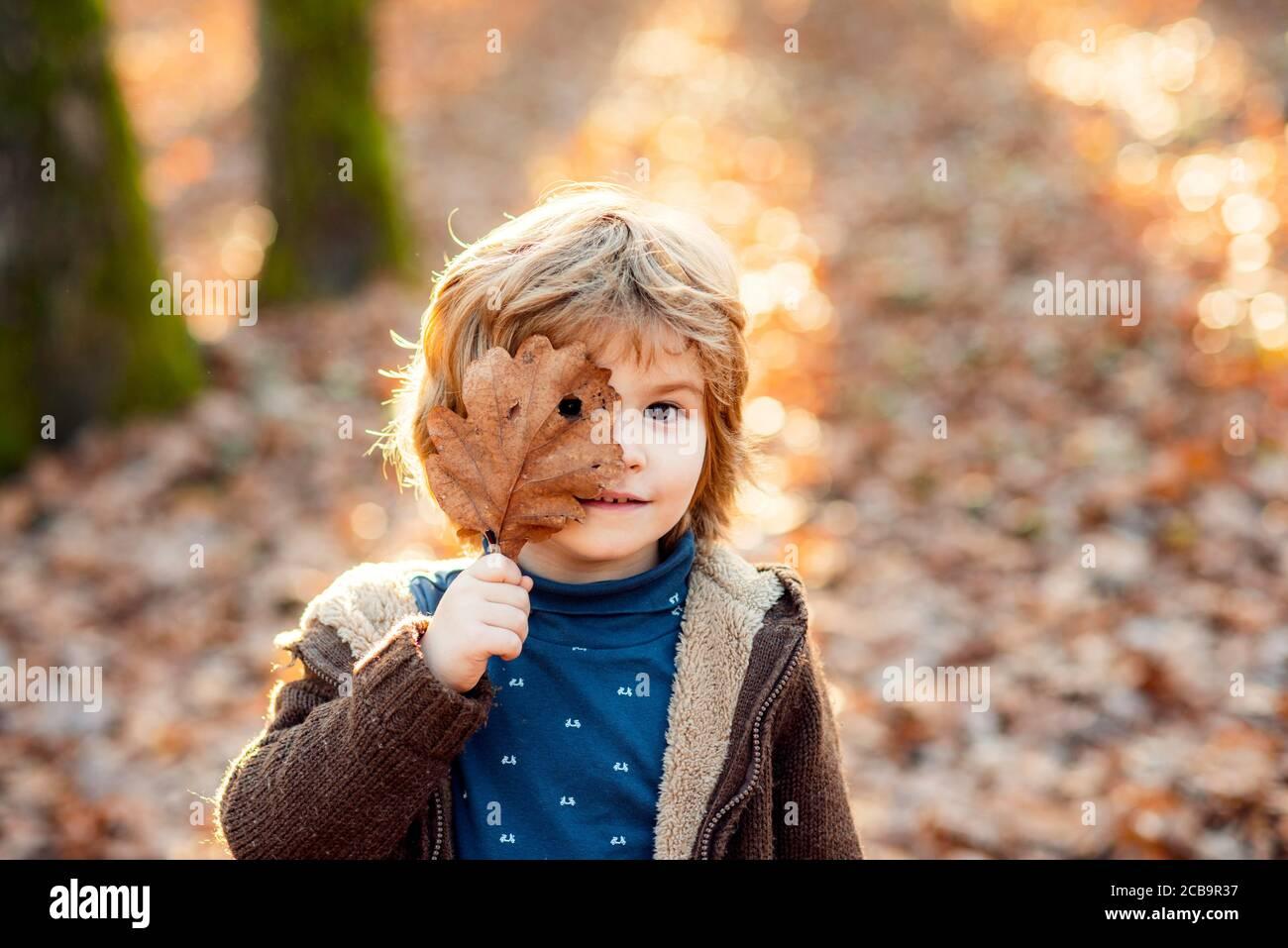 Kind Junge bedeckt seine Augen mit einem gelben Ahornblatt. Kleiner Junge, der im Park mit Herbstblättern spielt. Stockfoto