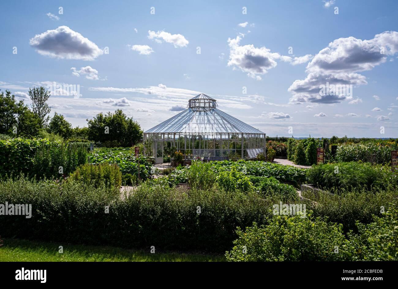 The Global Growth Gemüsegarten und achteckiges Gewächshaus, Hyde Hall, Essex, Großbritannien. Stockfoto