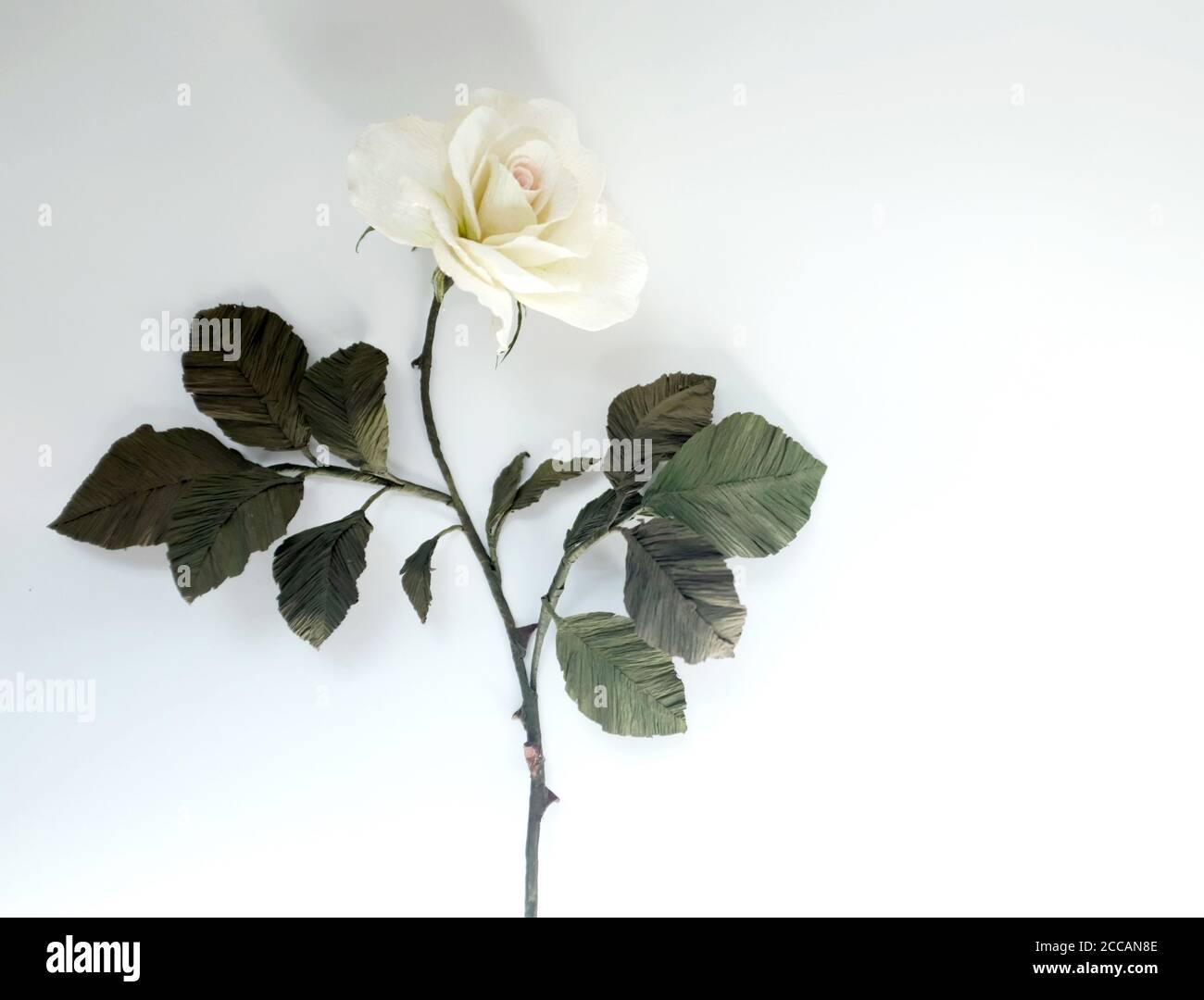 Papierblume (Weiße Rose mit grünen Blättern) Mit Kopierbereich Stockfoto