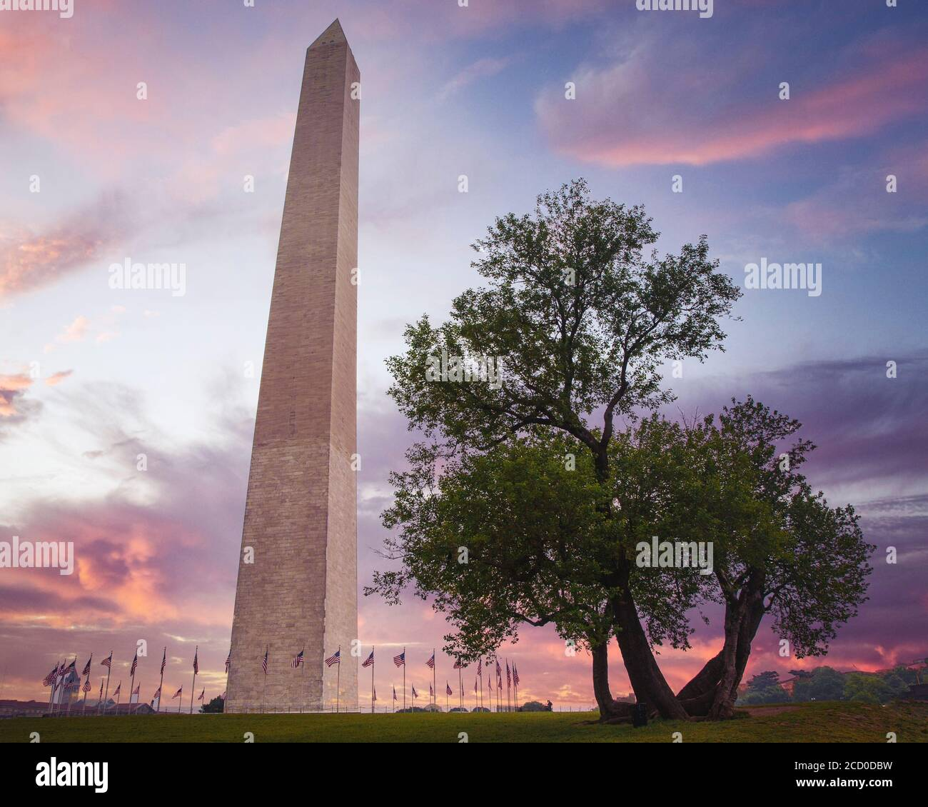 Das Washington Monument auf der National Mall in Washington DC. Stockfoto