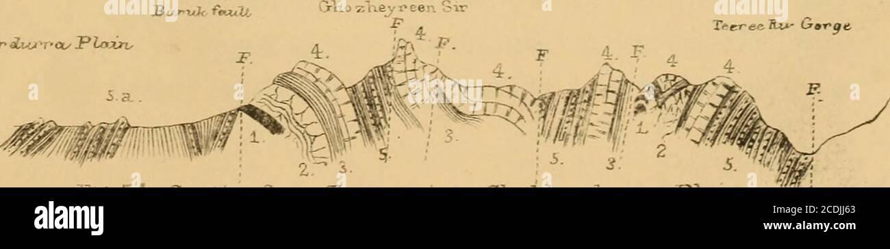 . Memoiren des Geologischen Survey of India . SR<xjtMJkur iUv -,-ou P lozn- Abb. 53. Sectioxi h.e l/utJLa-n Pass^. • Abschnitt von Z cr-LUN^i bis Shukkurcru/rva, Plain HÜGELLAND RANGES UND IHRE NACHBARSCHAFT VON BAHADUR KHEL, &C. 177 nördlich von diesem Ort in der Nähe von Sundd Kulla- Tertiärsandsteine EM« die tertiaiT Sandsteine gewellt in widenarSundaKullaKhel. Curveg oyer die groun^ aber steil nach Süden in den Ufern des Teeree Towey (Tiri Taui) Fluss tauchen. Rote Tonerde sind weitgehend mit den grauen Sandsteinen in Richtung der Hügel südwestlich des oben genannten Dorfes verbunden, Stockfoto
