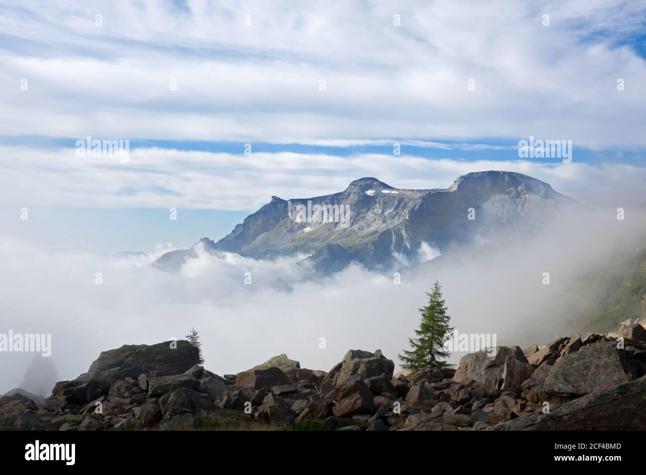 Berglandschaft im Morgengrauen mit einsamen Kiefern wächst zwischen riesigen Felsbrocken, Nebel im Tal Stockfoto