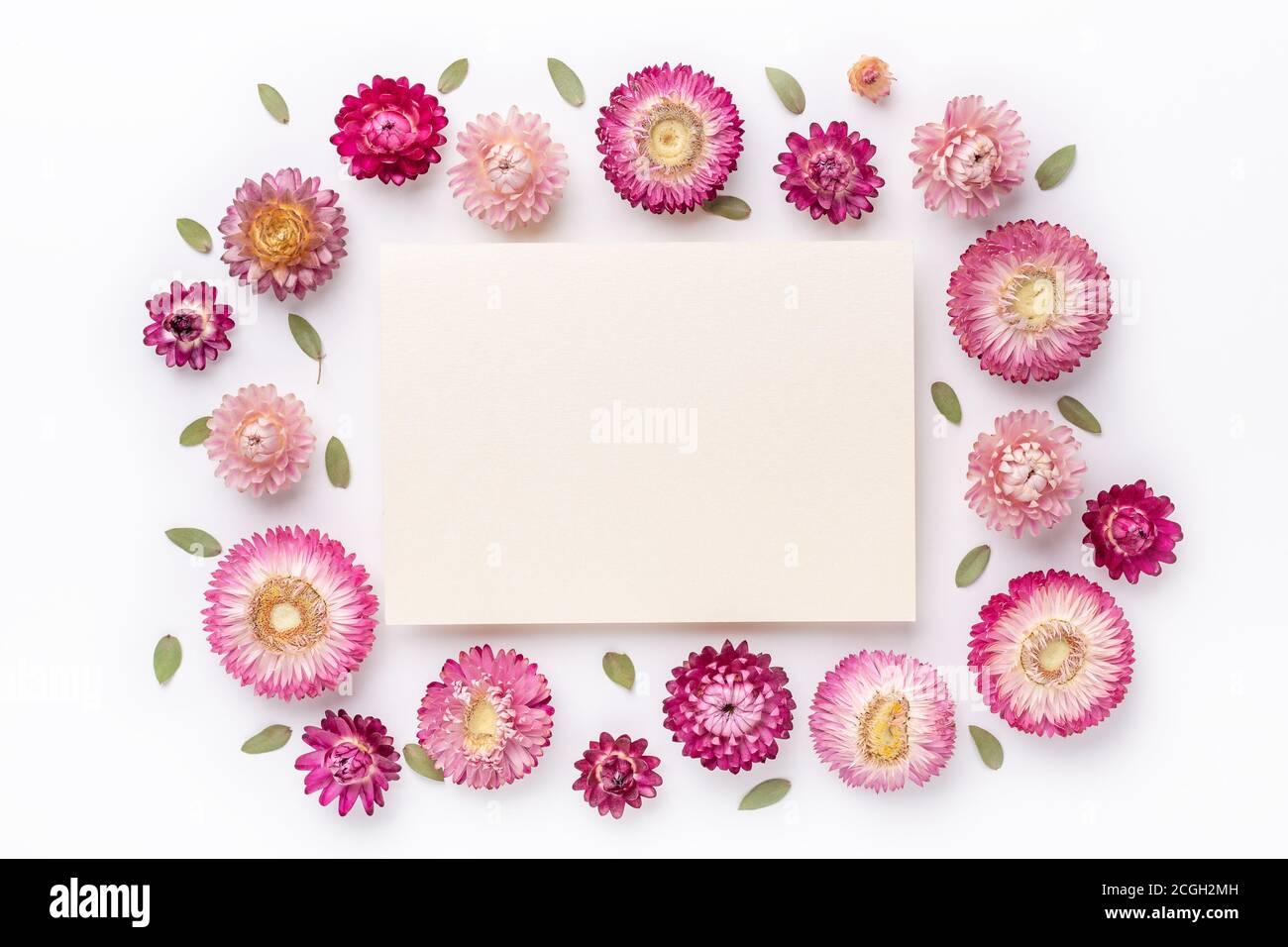 Blumenzusammensetzung. Papierrohling und Rahmen aus trockenen Blumen auf weißem Hintergrund. Flach liegend. Draufsicht. Kopierbereich - Bild Stockfoto