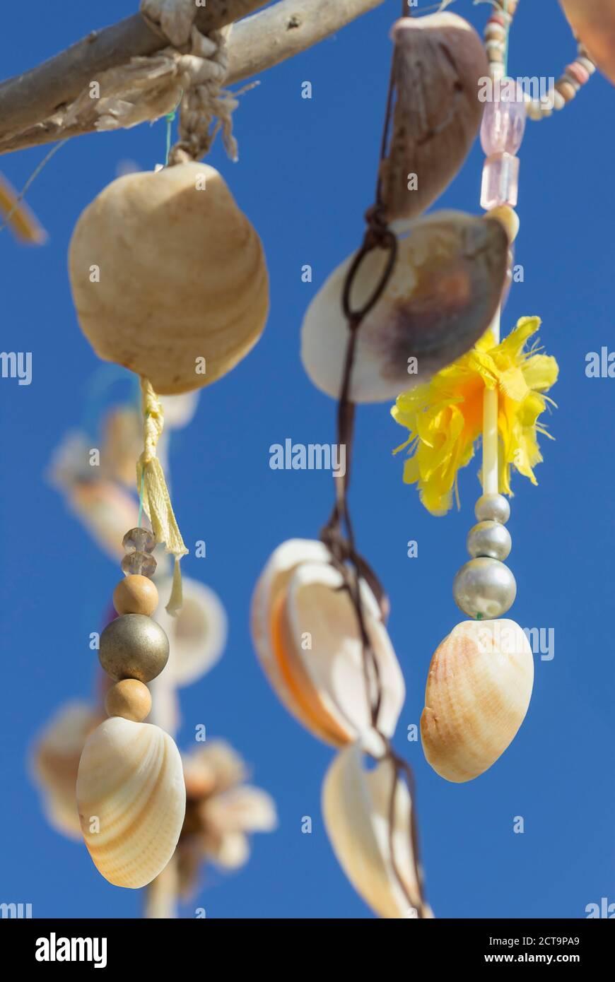 Spanien, Balearen, Formentera, Wunsch-Baum mit Muscheln Stockfoto