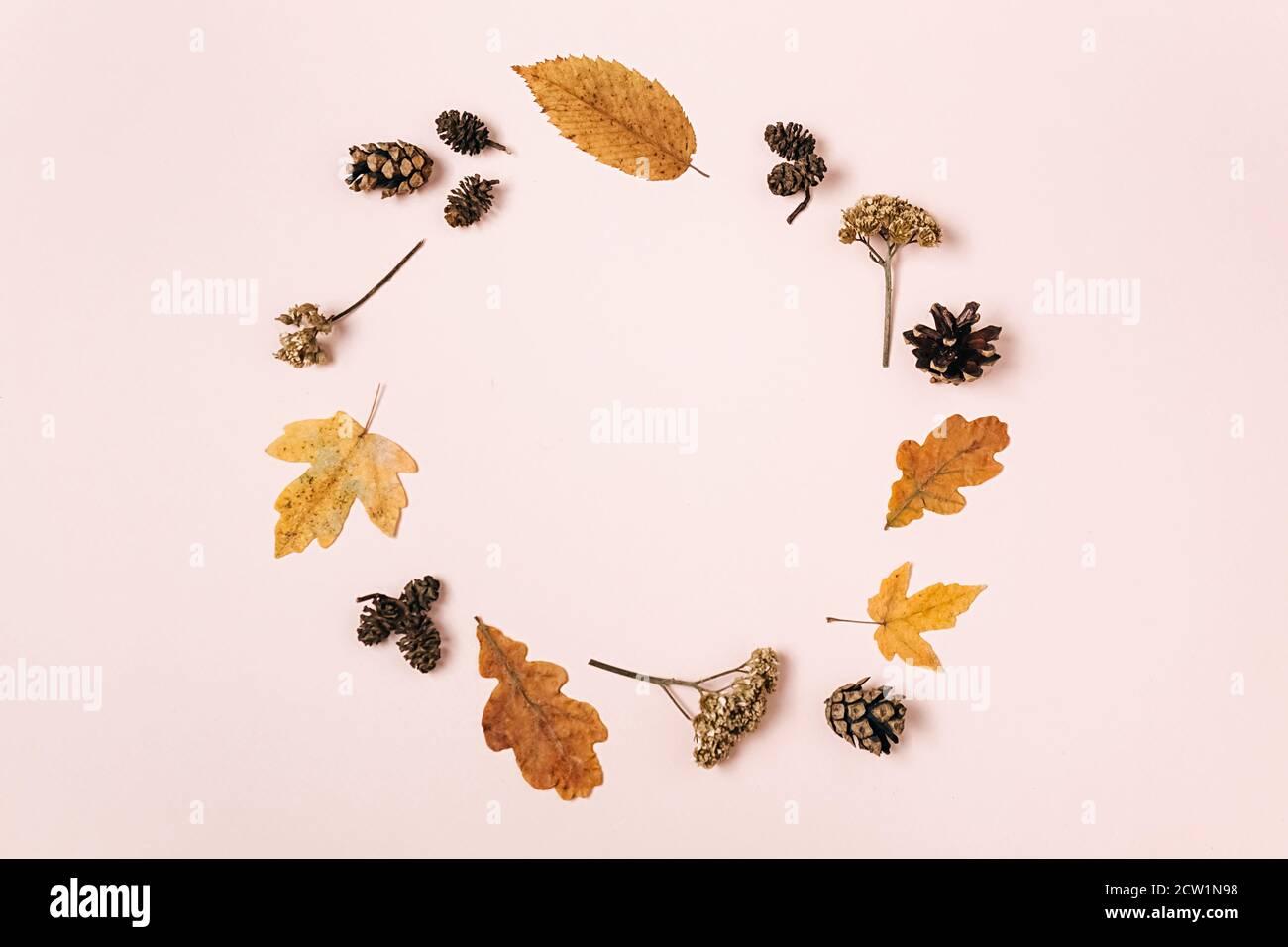 Kreative Komposition. Kranz aus getrockneten verschiedenen Blättern, Blumen, Tannenzapfen auf rosa Studiohintergrund für Werbung. Herbst, Herbst, Danksagung Stockfoto