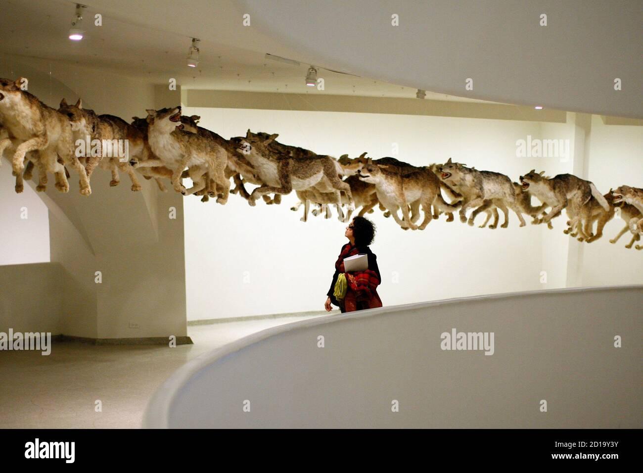 """Ein Besucher des Guggenheim-Museums geht durch die Installation """"Head On"""" von dem Künstler Cai Guo-Qiang in New York, 21. Februar 2008. Das Stück ist Teil der Ausstellung der Künstler Cai Guo-Qiang: Ich will to Believe. REUTERS/Keith Bedford (USA) Stockfoto"""