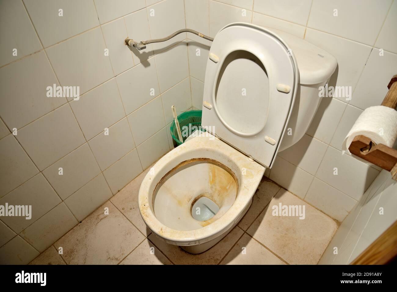 Öffentliche Toilette Teen Brünette 'Public Wanking'