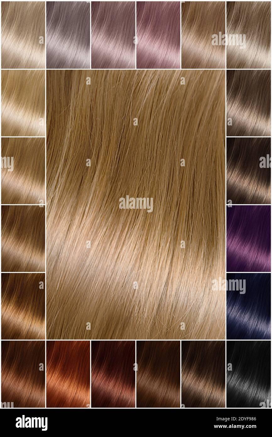 Braun haarfarben blond palette Haarfarben Verteilung