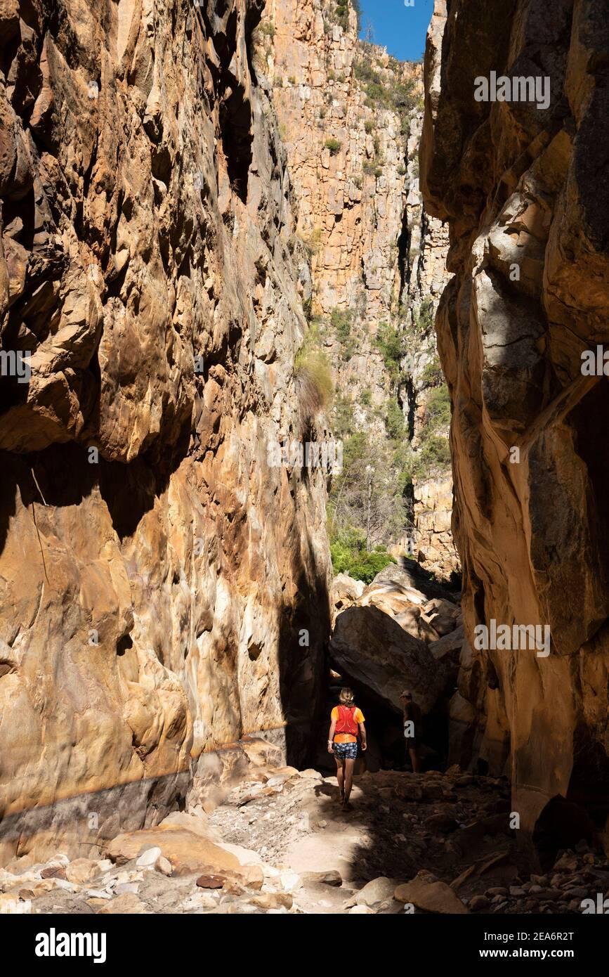 Wandern / Kloofing zu Cedar Falls, Baviaanskloof, Südafrika Stockfoto