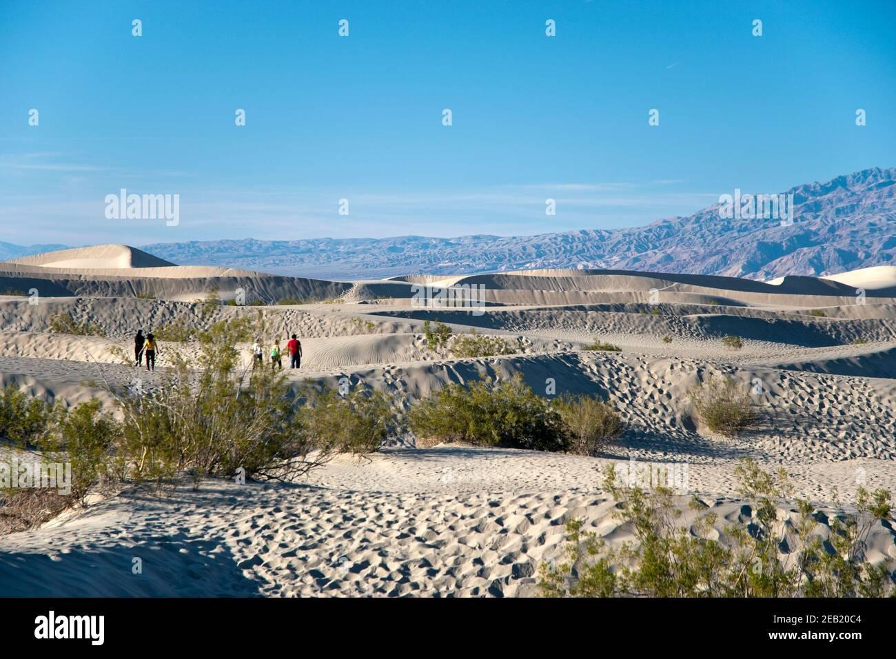 Die Mesquite Flats Sand Dunes am nördlichen Ende des Death Valley National Park, Kalifornien. Stockfoto
