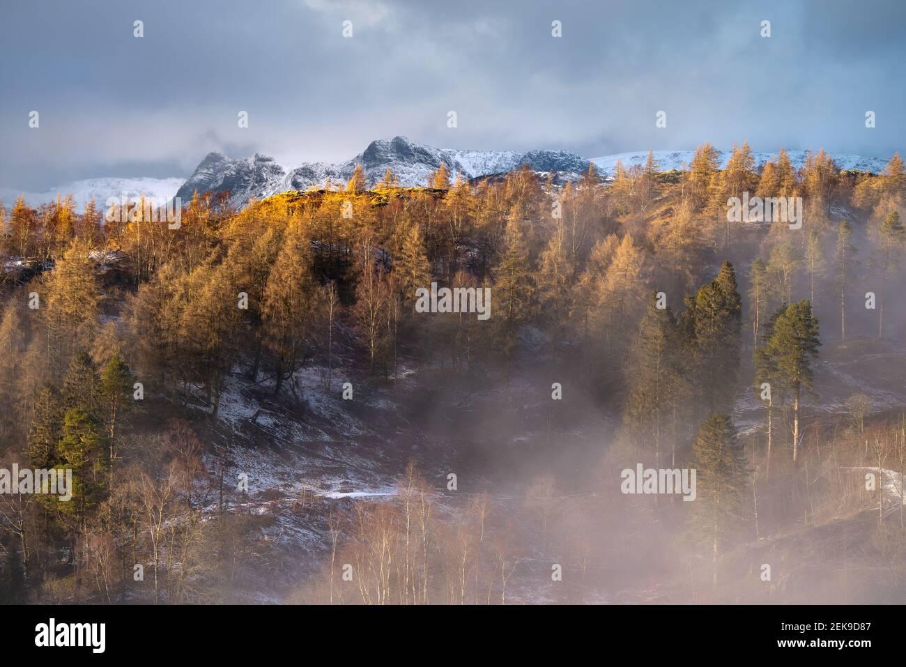Goldene alpine Landschaft mit schneebedeckten Bergen und dramatischem Himmel. Aufgenommen an einem Winternachmittag in Tarn Hows mit Blick auf die Langdale Pikes. Stockfoto