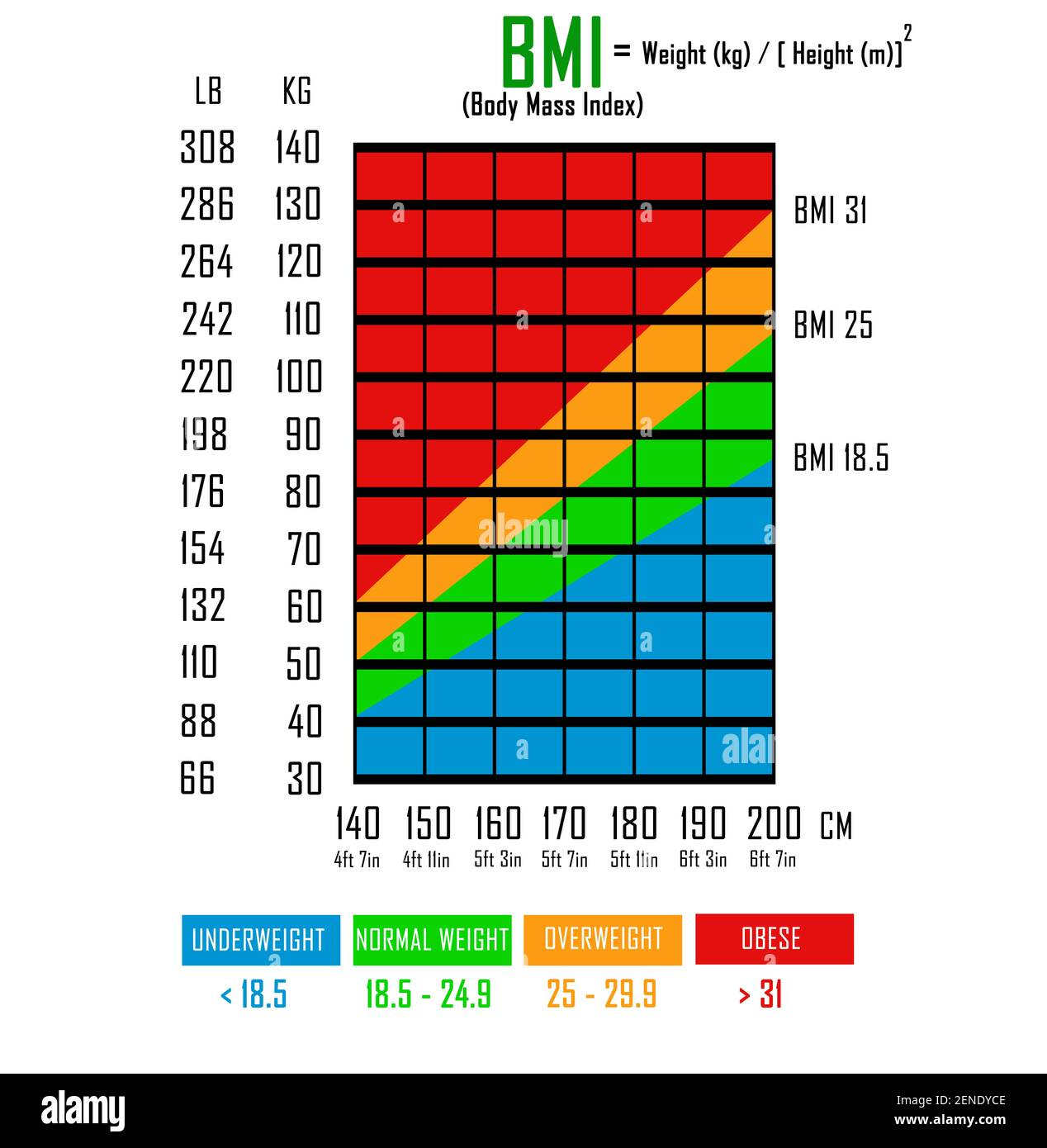Height Weight Chart Stockfotos und  bilder Kaufen   Alamy