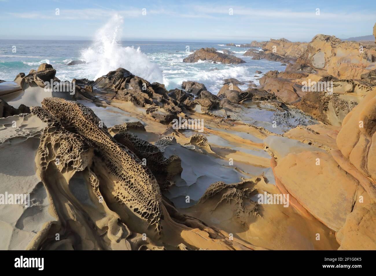 Tafoni mit Wild Surf, Salt Point State Park, Sonoma County, Kalifornien Stockfoto