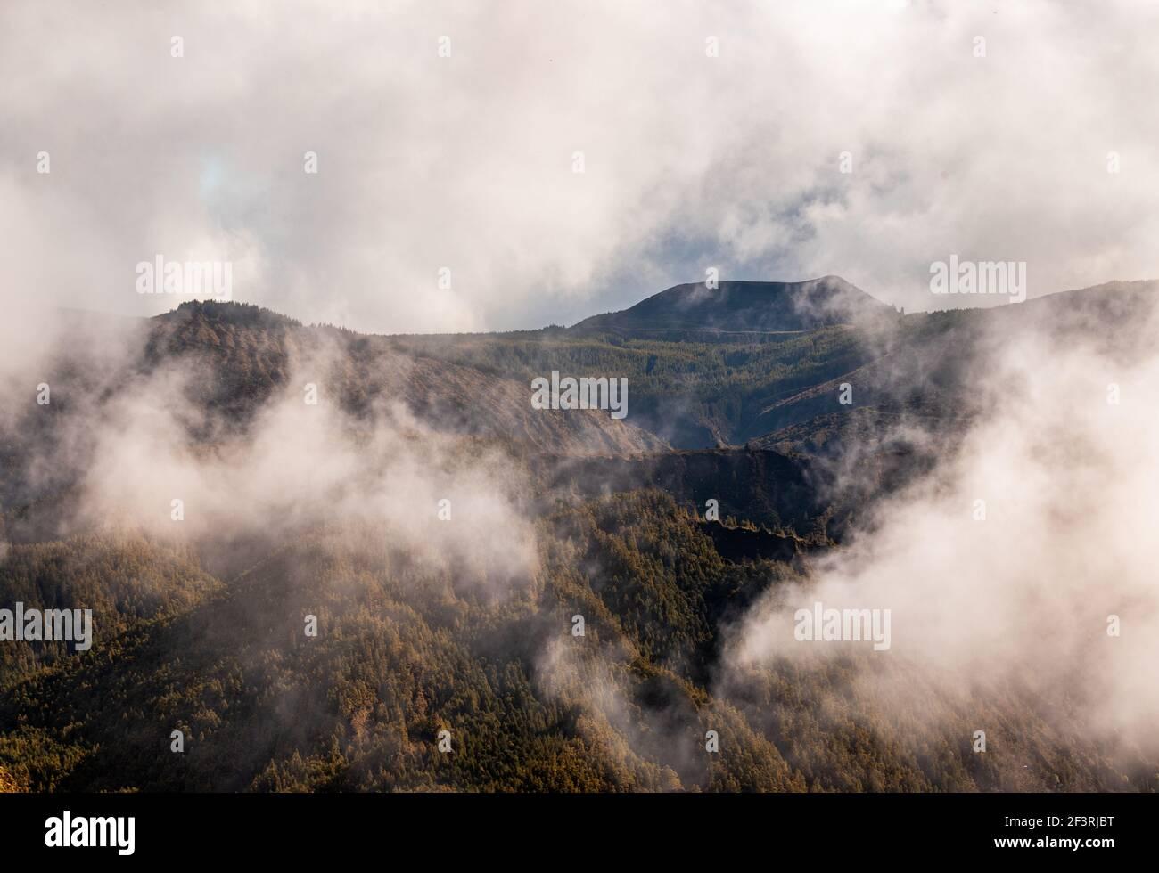 Nebel in den grünen Bergen, aufgenommen auf Sao Miguel Insel, Azoren Reiseziel. Stockfoto