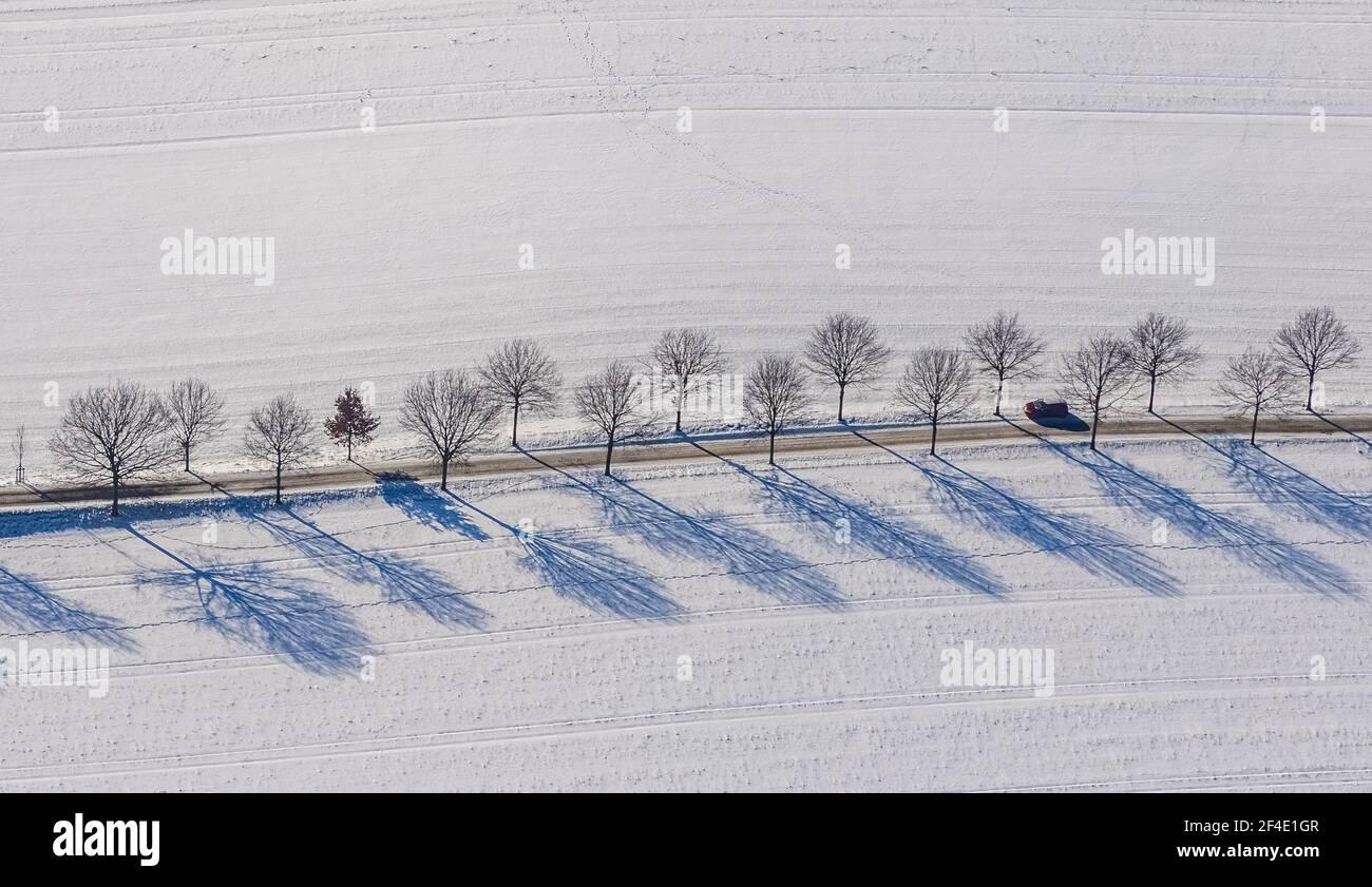Luftaufnahme, Baumreihe im Schnee, Blumenau am Kemnader See, Querenburg, Bochum, Ruhrgebiet, Nordrhein-Westfalen, Deutschland, DE, Europa, Luftaufnahme Stockfoto