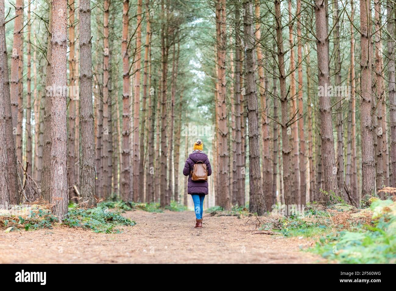 Frau mit Rucksack inmitten von Bäumen im Wald Stockfoto