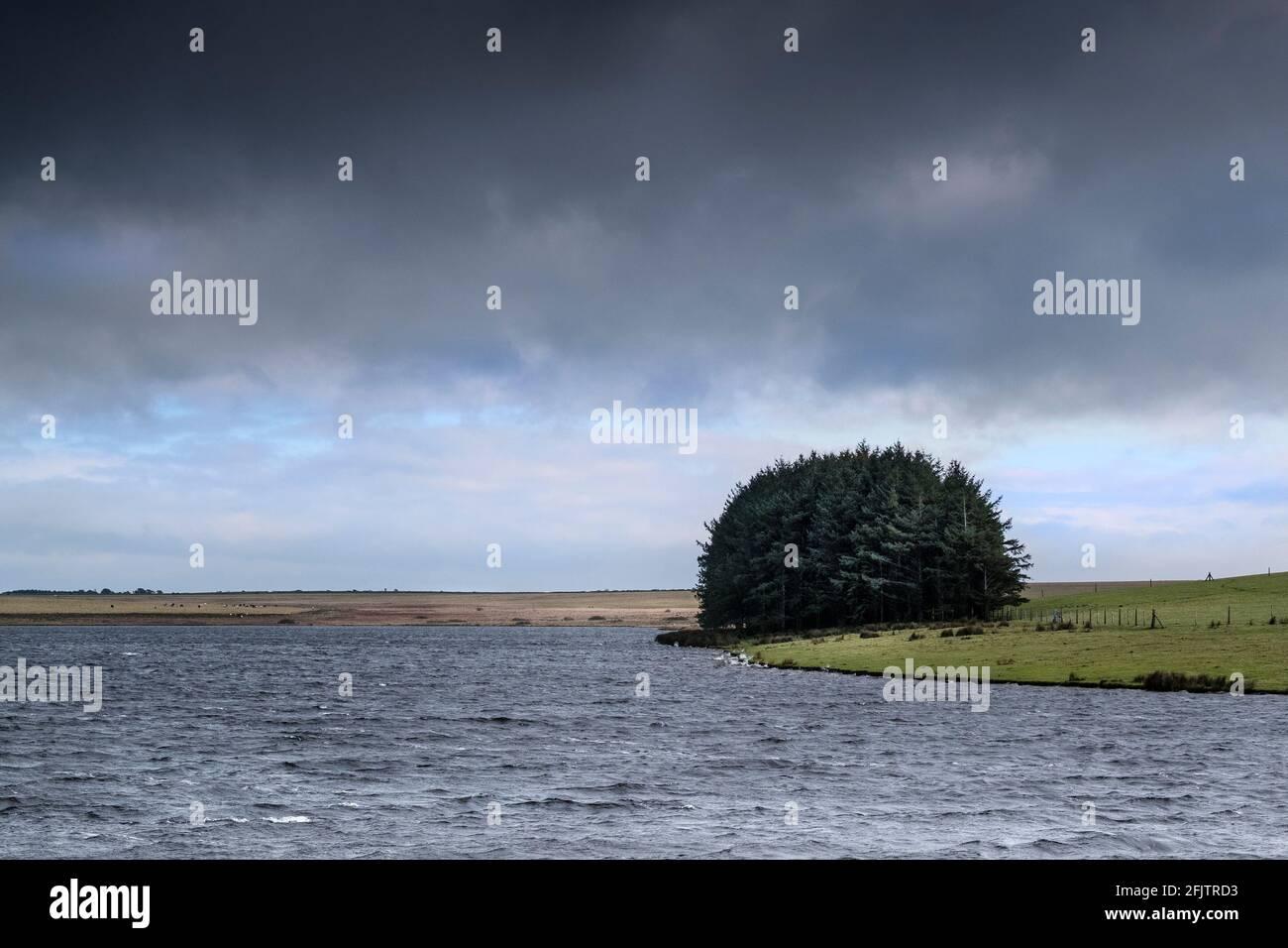 Crowdy Reservoir auf Bodmin Moor in Cornwall wird gemeinsam von South West Lakes und South West Water verwaltet. Stockfoto