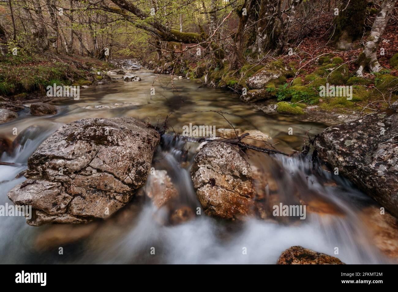Fondillo River, Val Fondillo, Abruzzen, Lazio und Molise Nationalpark, Abruzzen, Italien, Europa Stockfoto