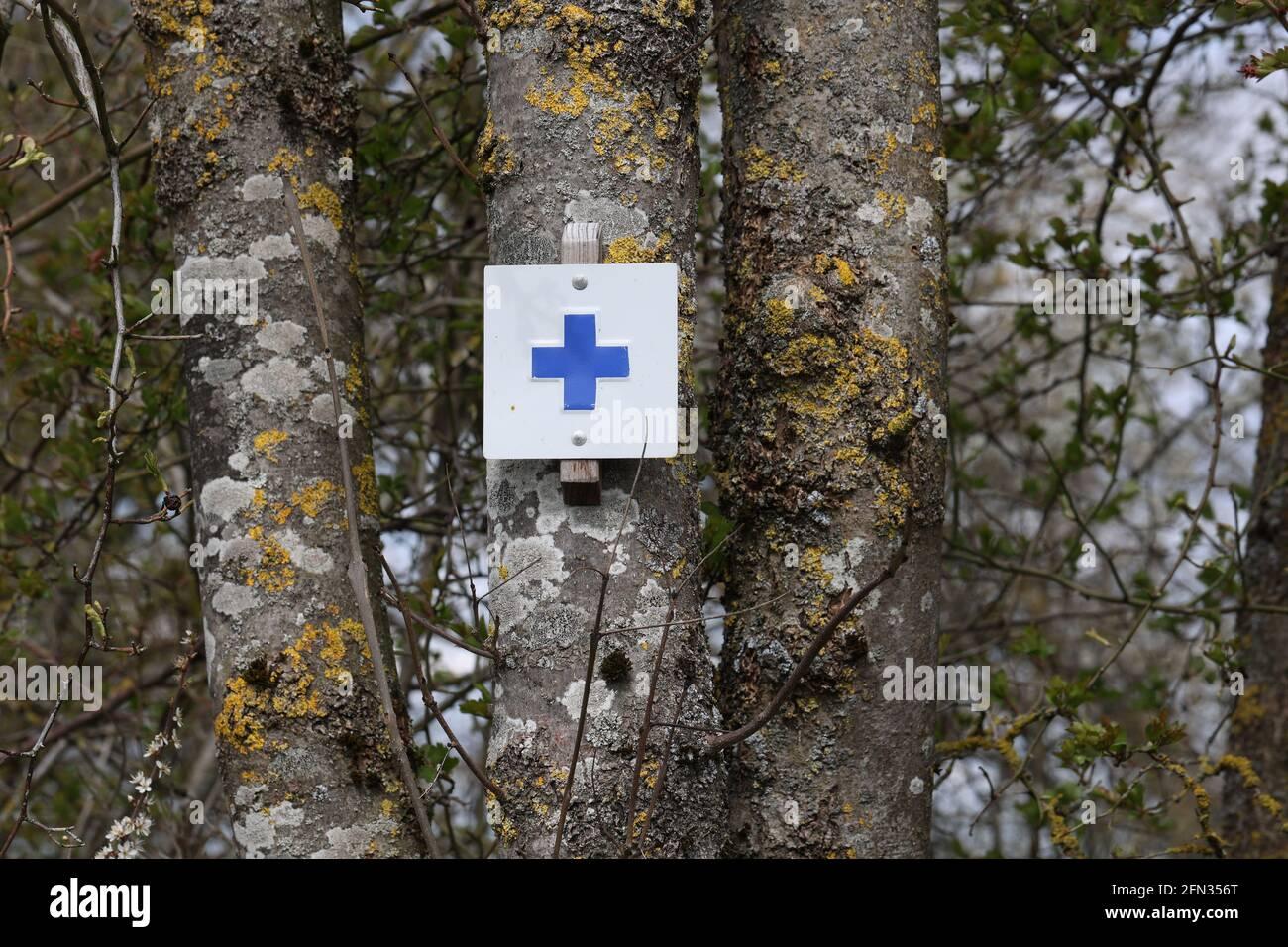 Blaues Kreuz Symbol Markiert Einen Touristischen Wanderweg Auf Einem Baum Im Wald Stockfotografie Alamy