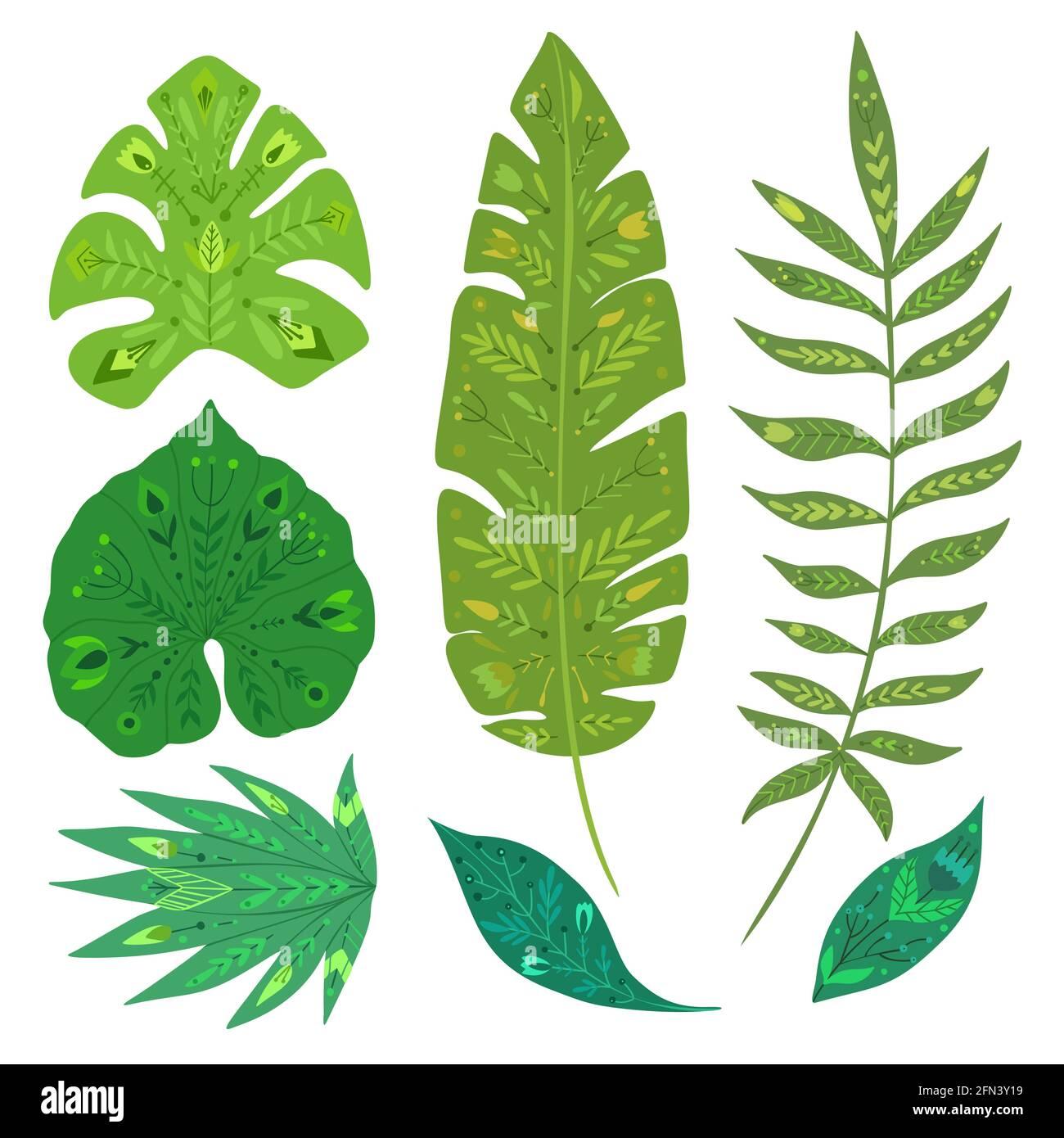 Set aus tropischen Blättern mit volkstümlichem Muster. Vektor natürliches Design-Element. Banane, Monstera, Palme und Liane. Vektor von Hand gezeichnetes flaches Laub mit Dekorat Stock Vektor