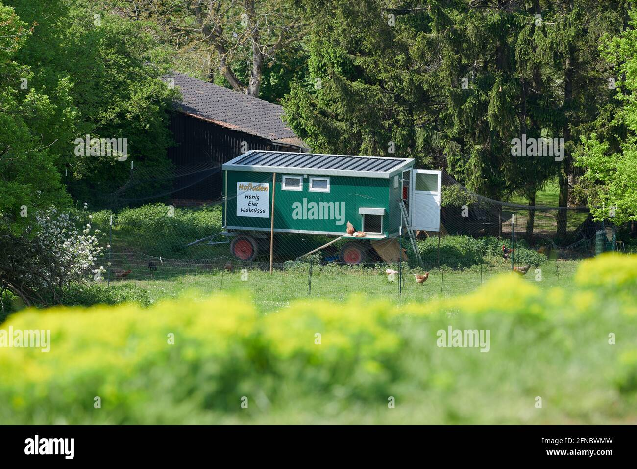 In einer laendlichen Umgebung steht ein Huehnerstall auf Raedern vor dem sich huehner befindet sich mit einem Hinweisschild auf einem Hofladen. Stockfoto