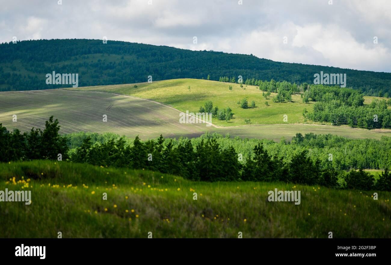 Hulun Buir. Juni 2021. Das am 10. Juni 2021 aufgenommene Foto zeigt die Sommerlandschaft des Waldes und des Graslandes entlang der Nationalstraße Nr. 332 in Hulun Buir, der Autonomen Region Innere Mongolei im Norden Chinas. Quelle: Lian Zhen/Xinhua/Alamy Live News Stockfoto
