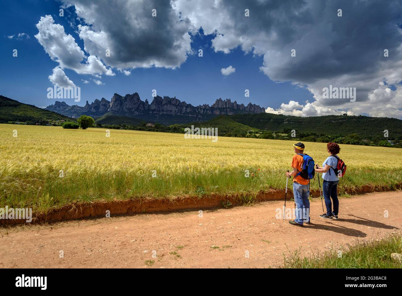 Wanderer, die zwischen Feldern in der Pla de Masroig wandern, mit dem Berg Montserrat im Hintergrund (Bages, Barcelona, Katalonien, Spanien) Stockfoto