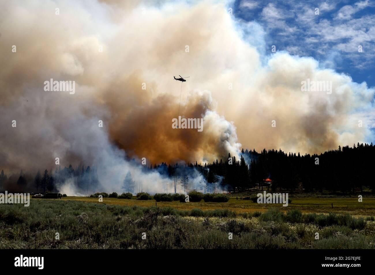 Doyle, Kalifornien, USA. Juli 2021. Doyle, CA - die nordöstliche Flanke des Sugar Fire zeigte am Montag weiterhin ein aktives Brandverhalten, allerdings konnten Feuerwehrleute die Eindämmung bis zum späten Nachmittag auf 26 % erhöhen. Das Feuer liegt derzeit auf 91,200 Acres. Quelle: Neal Waters/ZUMA Wire/Alamy Live News Stockfoto