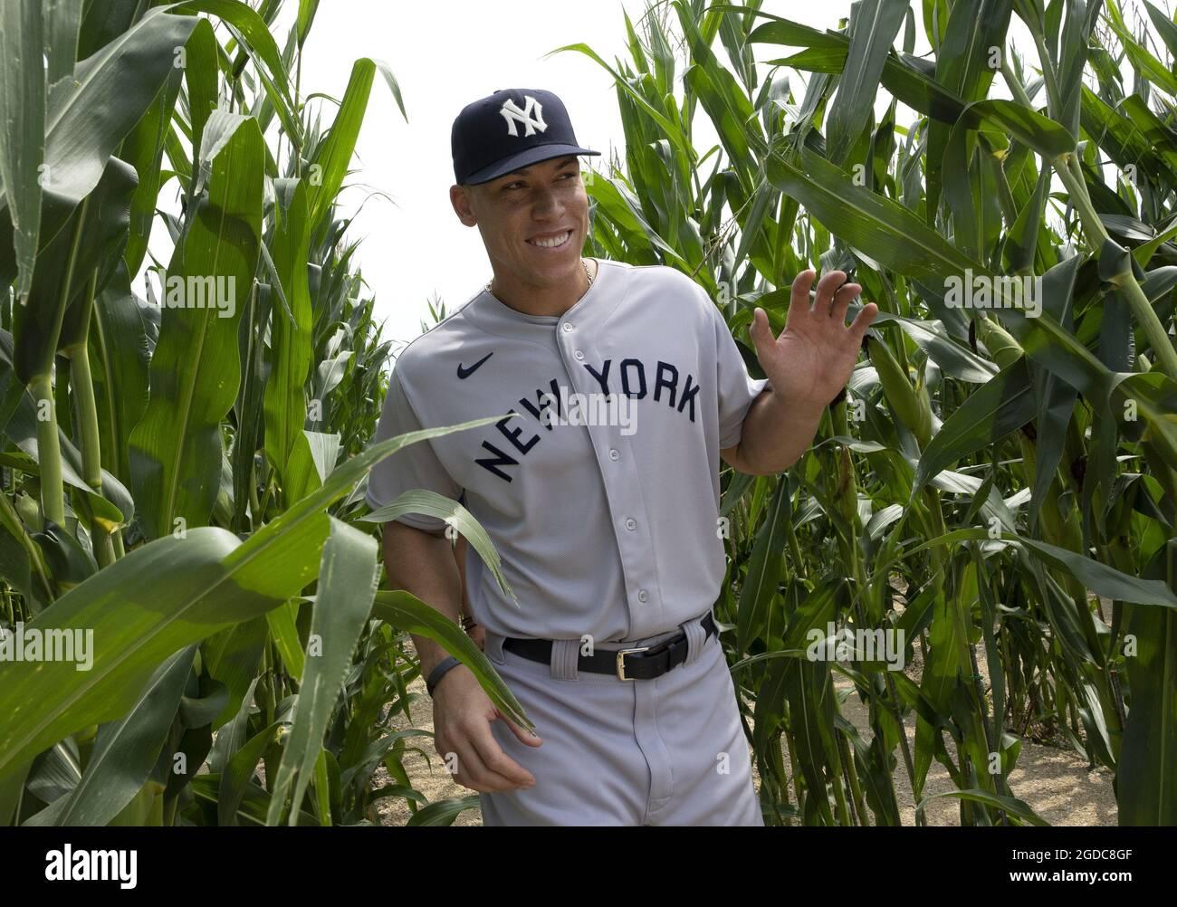 """Dyersville, Usa. August 2021. Der New Yorker Yankees-Star Aaron Judge geht vom Filmset-Ballpark 1989 des """"Field of Dreams"""" durch das Maisfeld, während er sich am Donnerstag, den 12. August 2021, in einem angrenzenden MLB Field of Dreams-Ballpark in Dyersville, Iowa, auf das Spiel vorbereitet. Die New York Yankees und Chicago White Sox werden das erste MLB-Spiel der regulären Saison in Iowa spielen. Foto von Pat Benic/UPI Credit: UPI/Alamy Live News Stockfoto"""