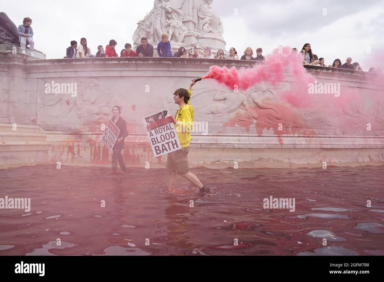 Während eines Protestes vor dem Buckingham Palace in London lassen Demonstranten des Extinction Rebellion im Brunnen des Queen Victoria Memorial, den sie mit roter Farbe überzogen haben, Leuchtraketen los. Bilddatum: Donnerstag, 26. August 2021. Stockfoto