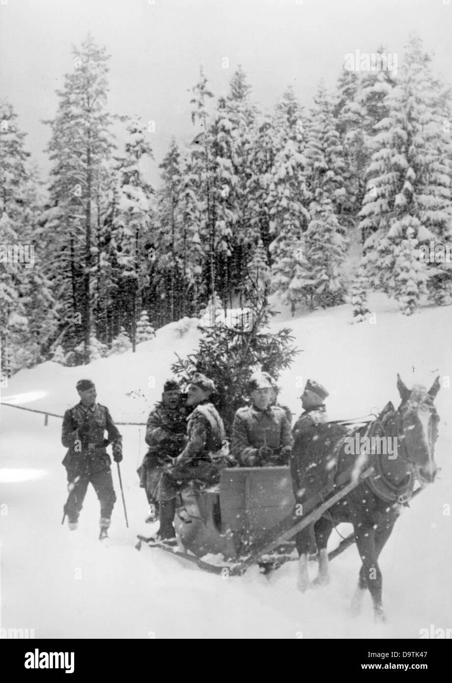 Soldaten der deutschen Wehrmacht transportieren einen Weihnachtsbaum ...