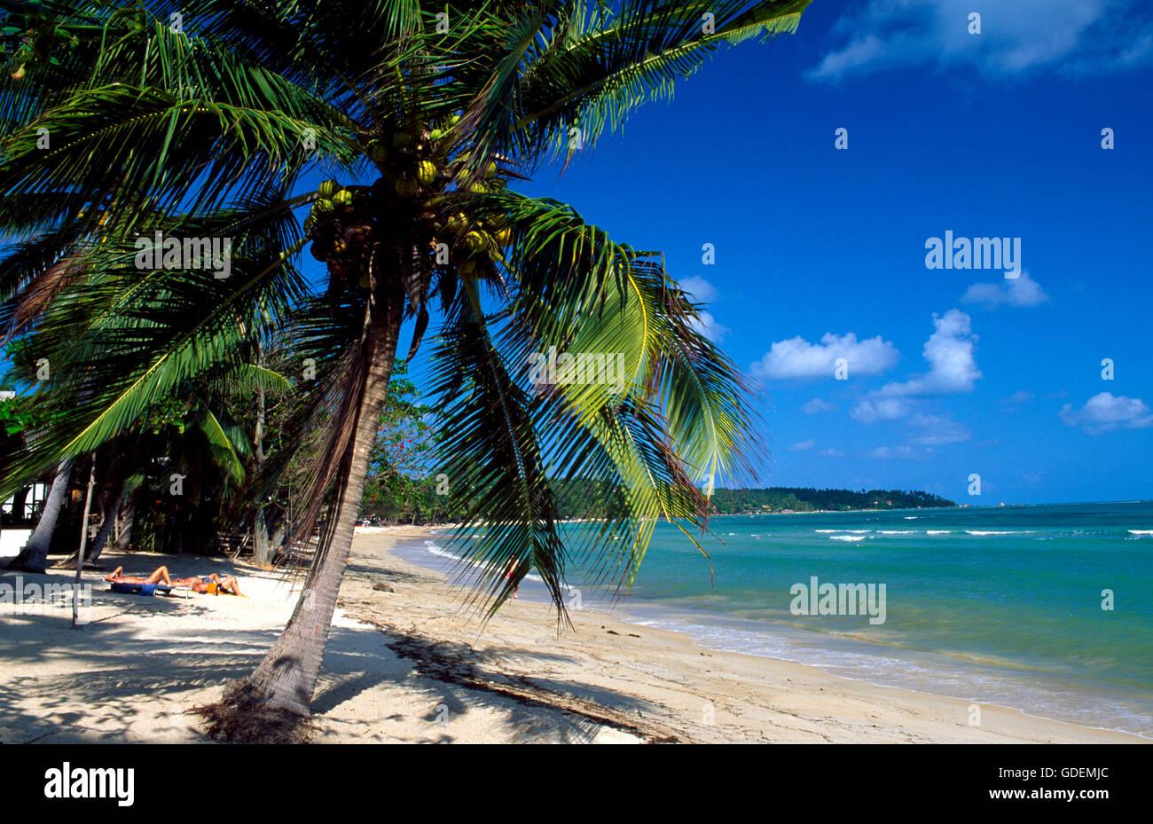 Chaweng Beach Koh Samui Thailand Stockfoto Bild 111576260 Alamy