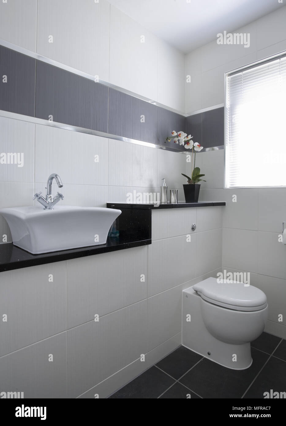 Waschbecken Auf Der Einheit Neben Dem Niedrigen Niveau Wc Mit