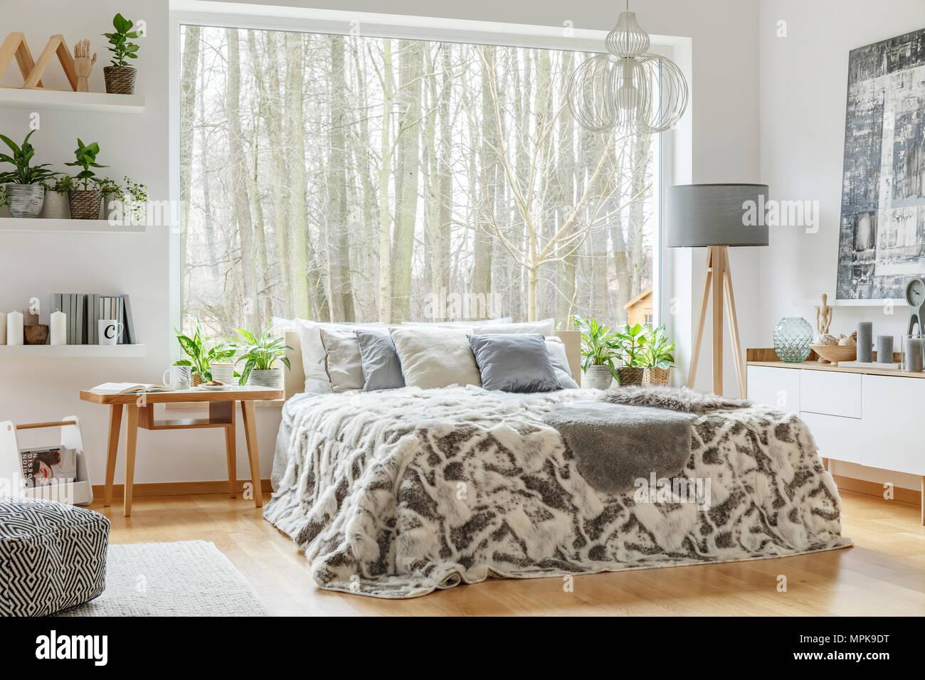 Geraumige Gemutliche Schlafzimmer Mit Einem King Size Bett Mit