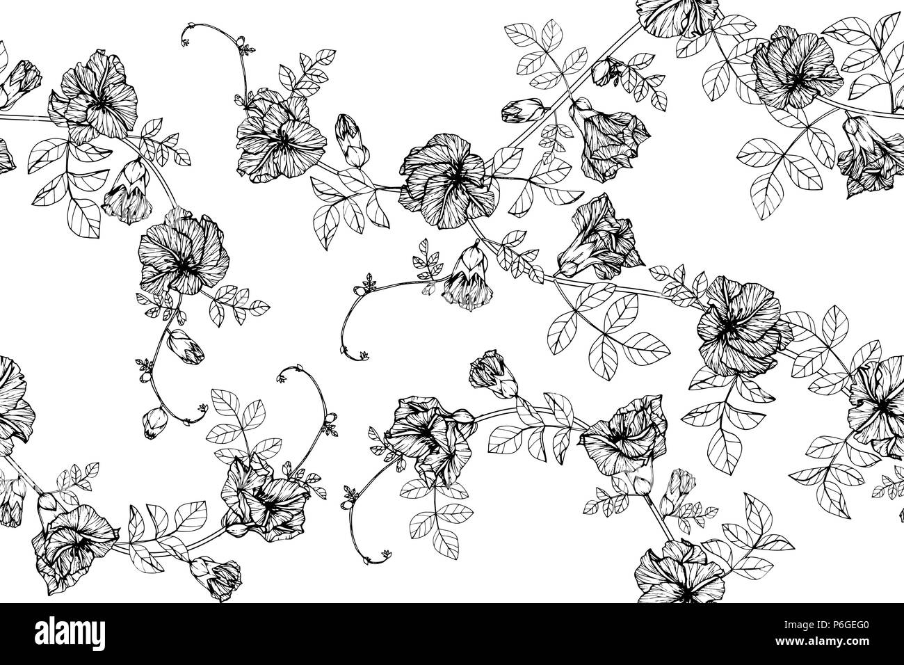 Nahtlose Butterfly Pea Flower Muster Hintergrund Schwarz Und Weiß