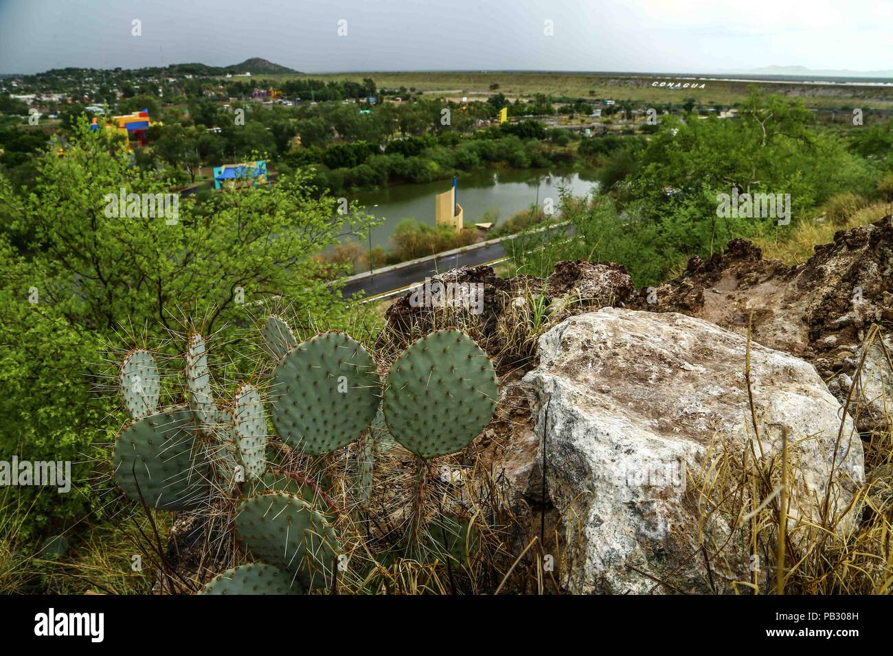 Cielo Lluvia Nublado Agua Humedal Una Cna Verde Desierto