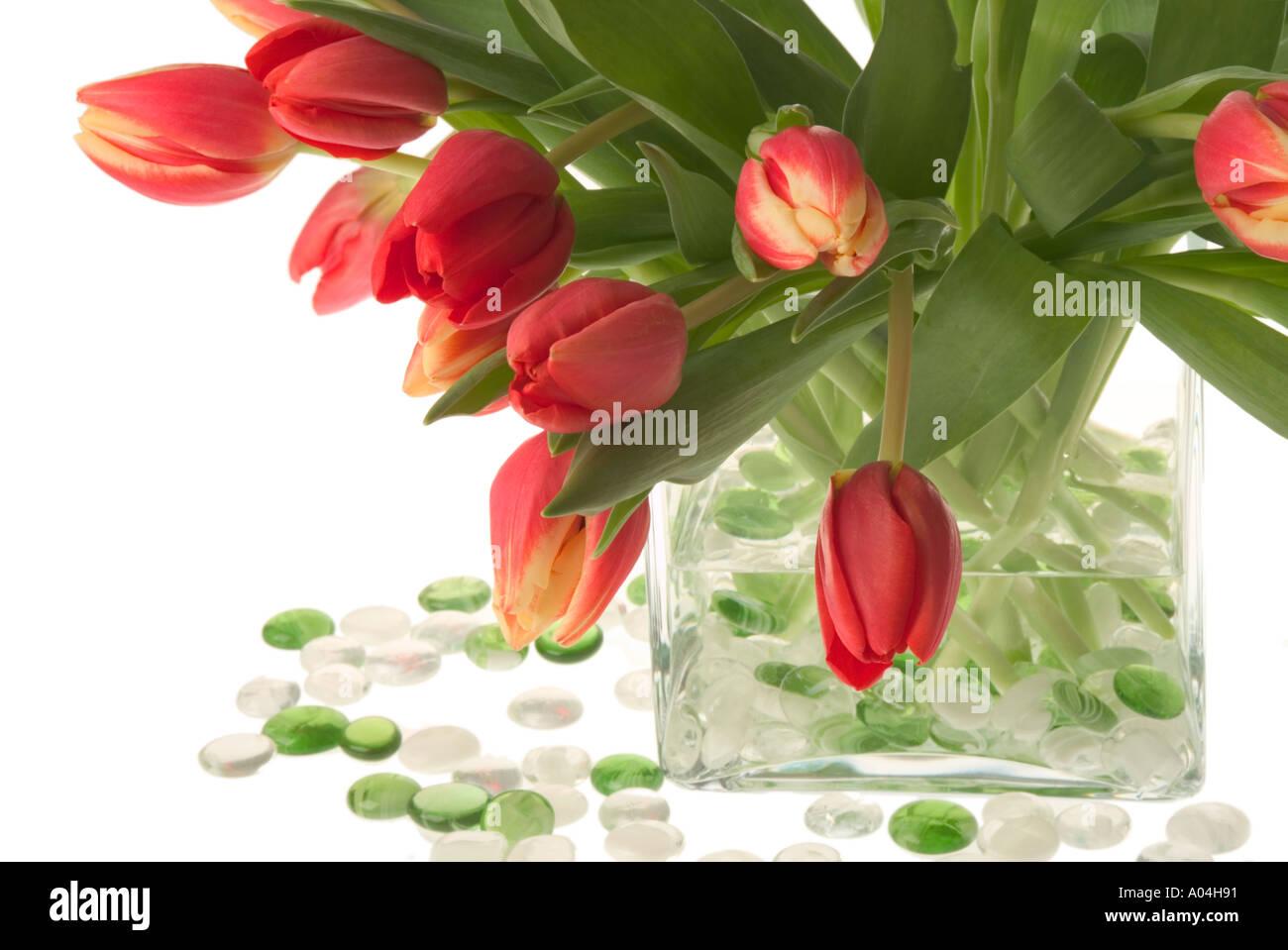 leuchtend roten tulpen in glasvase mit farbigem glas edelsteine stockfoto bild 3223952 alamy. Black Bedroom Furniture Sets. Home Design Ideas