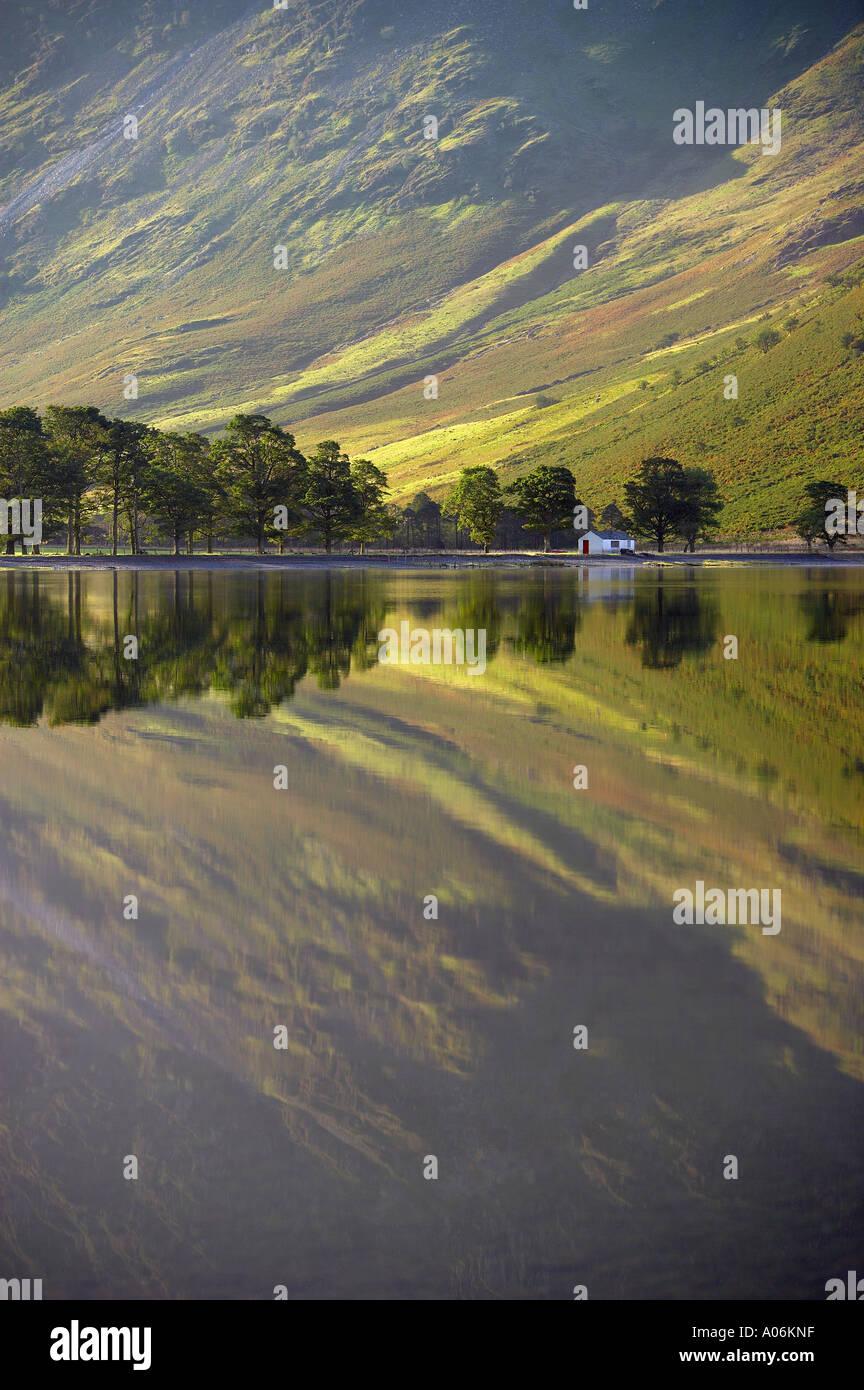 Reflexionen über die Ufer Buttermere im Morgengrauen Lakes Distrikt Cumbria England UK Stockfoto