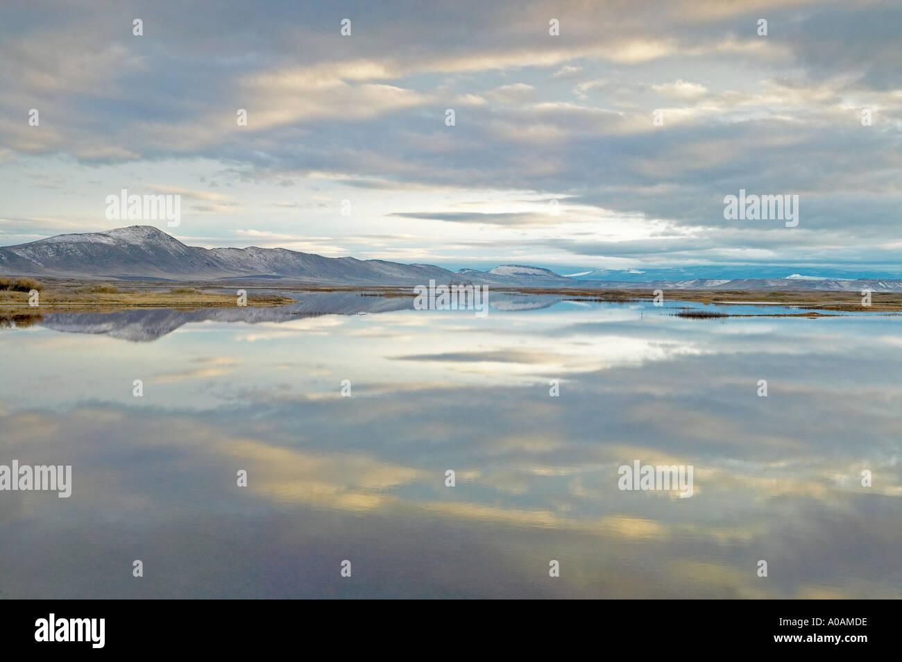Reflexion im unteren Klamath Lake National Wildlife Refuge Kalifornien Stockbild