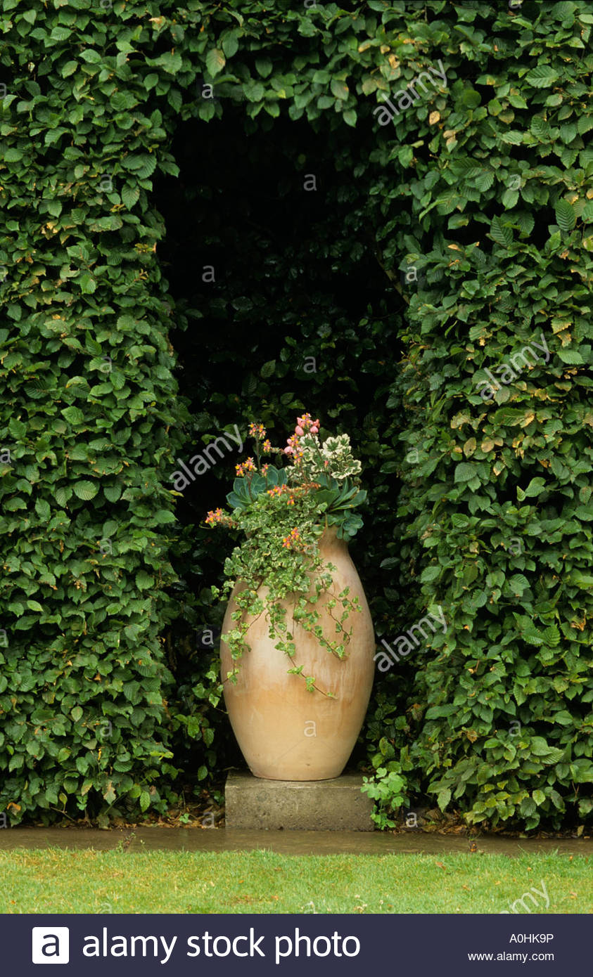Arch Hedge Stockfotos & Arch Hedge Bilder Seite 12 Alamy