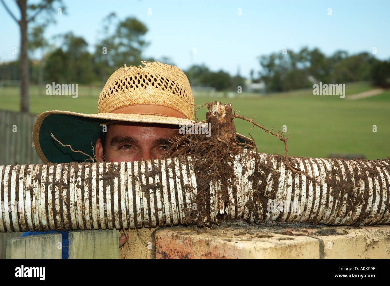 Plumber Straw Hat Clogged Stormwater Stockfotos & Plumber Straw Hat ...