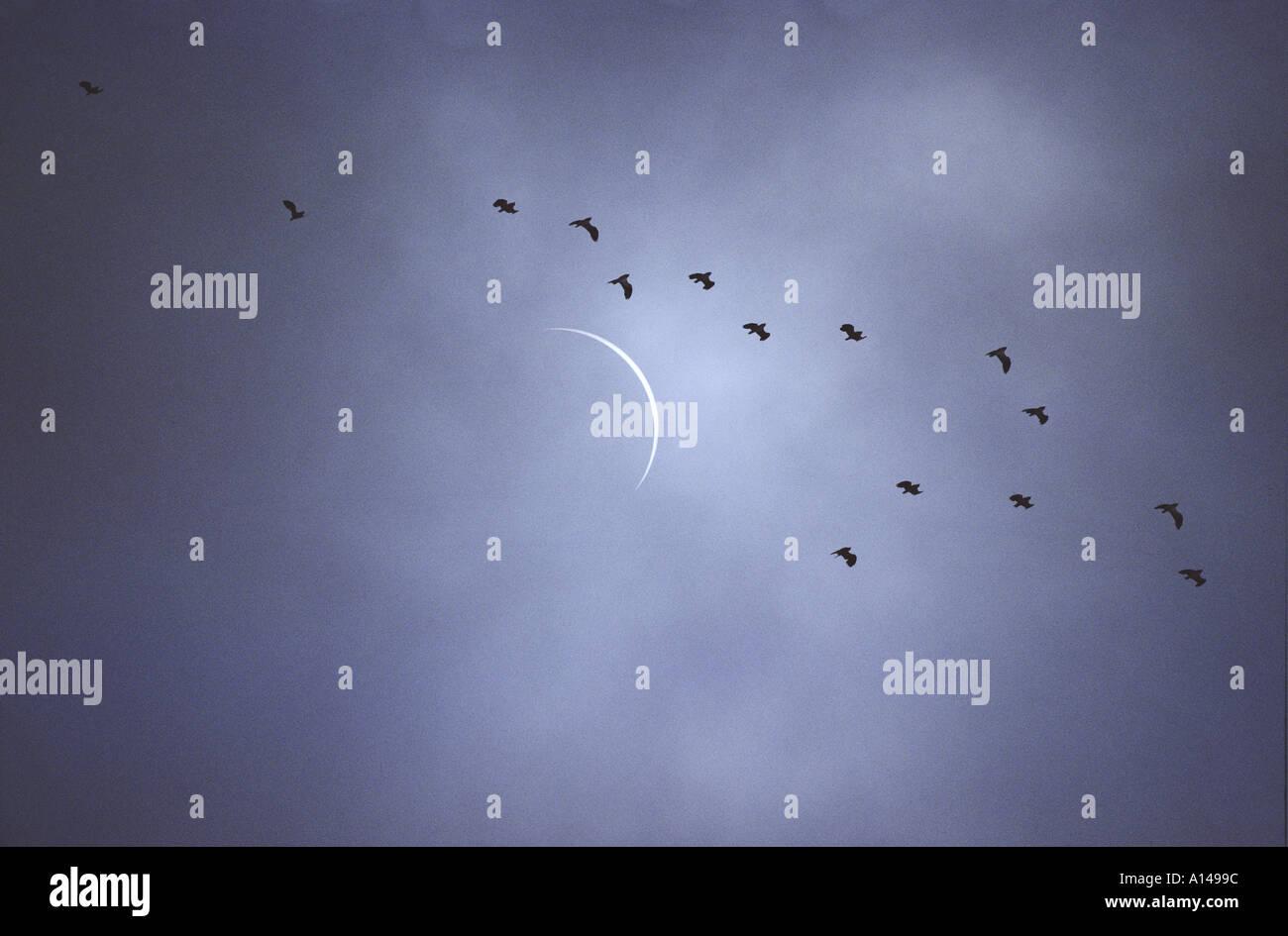 Sonnenfinsternis, teilweise verdeckt von dünnen Wolke Frankreich August 1999 Stockbild