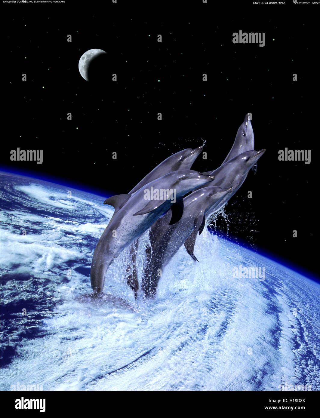 Delphine springen von einem Hurrikan auf der Erde Stockbild